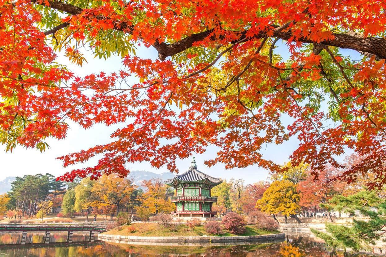 Lý do du lịch Hàn Quốc