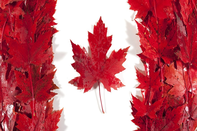 Du lịch Canada cần biết những gì?