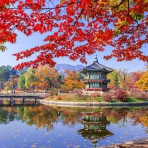 Du lịch Hàn Quốc mua gì?Du lịch Hàn Quốc mua gì?