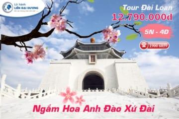 Tour Du lịch ngắm hoa anh đào Đài Loan