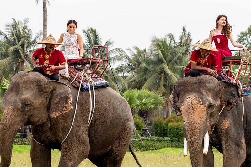 Du khách có thể cưỡi voi tại Suanthai