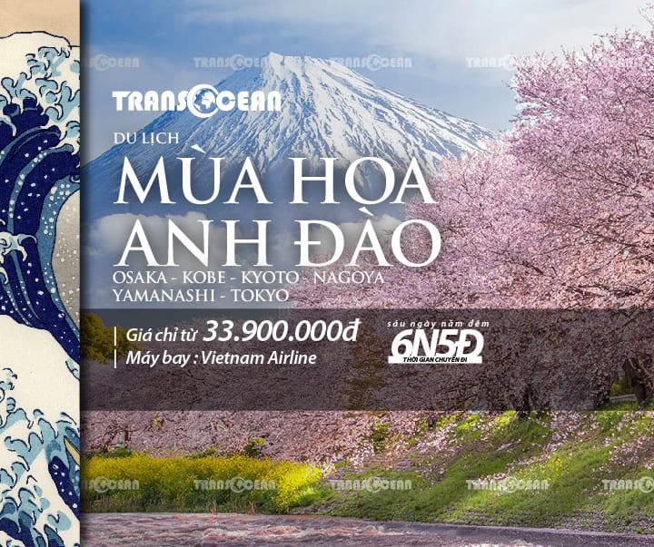 TOUR MÙA HOA ANH ĐÀO | OSAKA – KOBE – KYOTO – NAGOYA – YAMANASHI – TOKYO