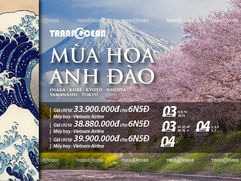 MÙA HOA ANH ĐÀO | OSAKA – KOBE – KYOTO – NAGOYA – YAMANASHI – TOKYO