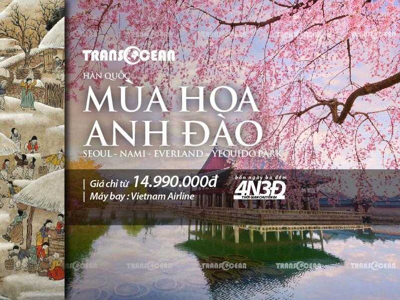 MÙA HOA ANH ĐÀO| SEOUL - NAMI - EVERLAND - BLOSSOM FLOWERS YEOUIDO PARK