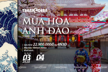 TOUR MÙA HOA ANH ĐÀO NHẬT BẢN | TOKYO – FUJI – YAMANASHI