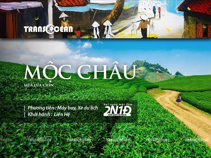 TOUR DU LỊCH MỘC CHÂU MÙA MẬN CHÍN 2020